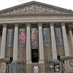 fitzwilliam müzesi